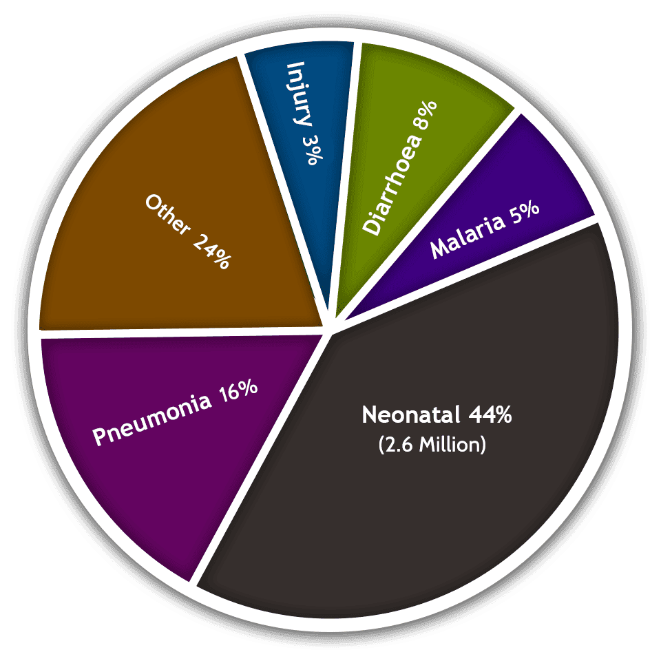 Child First Meds-Pie Chart
